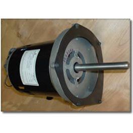 513968  Headstock Electric Euro  Motor 240v